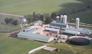 5758 305th Ave Boyd 296 acre dairy with ample buildings!