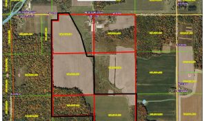 W5109 Popple River Rd Owen -Very nice tillable ground parcel!