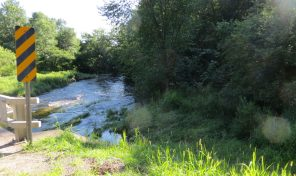 MLS #1545016 Wooded land along Pine Creek 42.1 acres