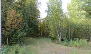 Otter lake lot on 154th Ave